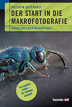 Der Start in die Makrofotografie
